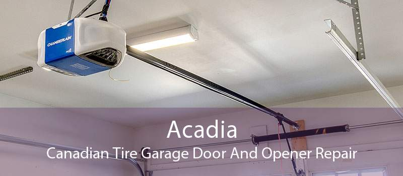 Acadia Canadian Tire Garage Door And Opener Repair