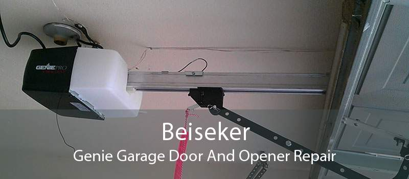 Beiseker Genie Garage Door And Opener Repair