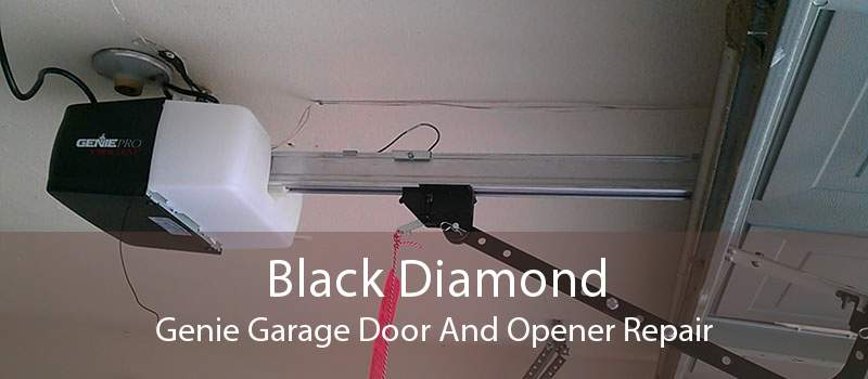 Black Diamond Genie Garage Door And Opener Repair