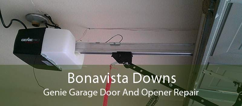Bonavista Downs Genie Garage Door And Opener Repair