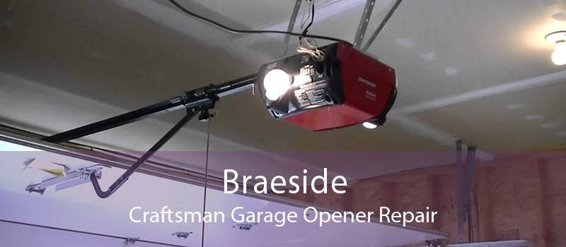 Braeside Craftsman Garage Opener Repair