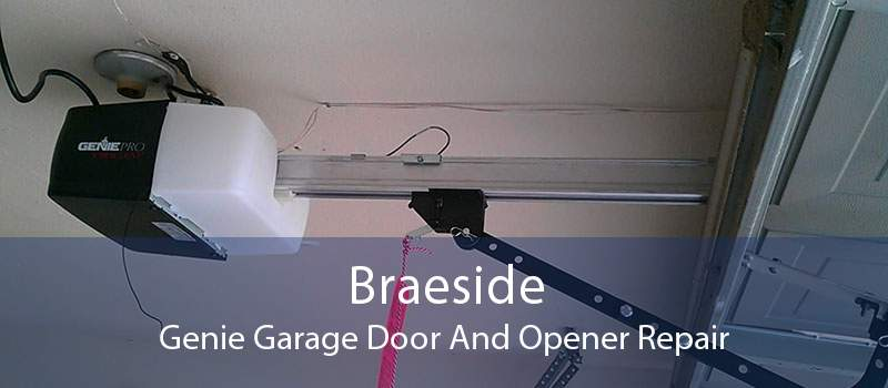 Braeside Genie Garage Door And Opener Repair
