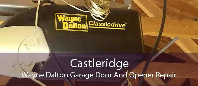 Castleridge Wayne Dalton Garage Door And Opener Repair