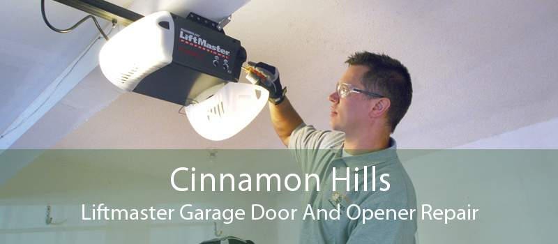 Cinnamon Hills Liftmaster Garage Door And Opener Repair