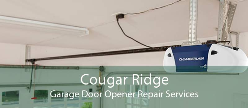 Cougar Ridge Garage Door Opener Repair Services