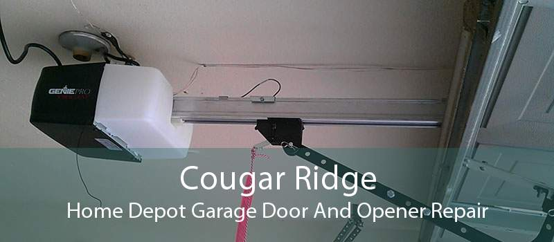 Cougar Ridge Home Depot Garage Door And Opener Repair
